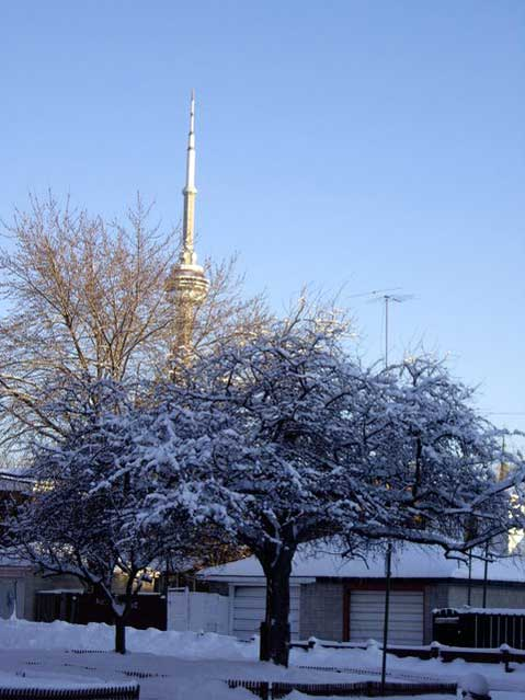 Toronto Photos :: Polin :: Toronto. CN Tower in winter