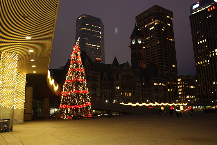 Toronto Photos :: City Hall :: Toronto. A Christmas Tree in front of the City Hall