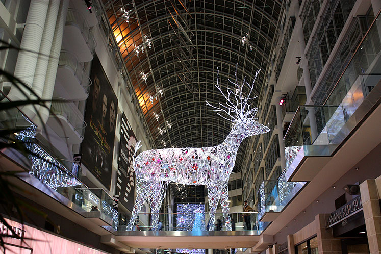 Toronto Photos :: Eaton Centre :: Eaton Centre - a deer in the center of the mall