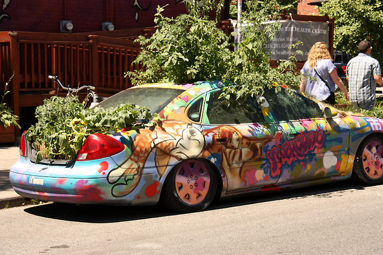 Toronto Photos :: Kensington market :: Kensington Market - garden in a car