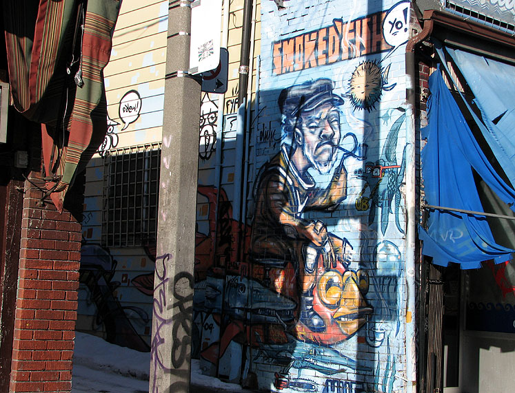 Toronto Photos :: Wall Murals & Graffiti :: Kensington Market graffiti