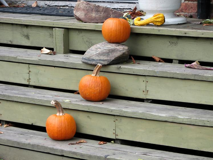 Toronto Photos :: Halloween :: Kensington Market - pumpkins on the stairs