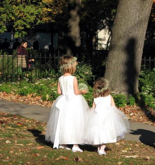 Toronto Photos :: King Street :: Flower girls. St. James cathedral.