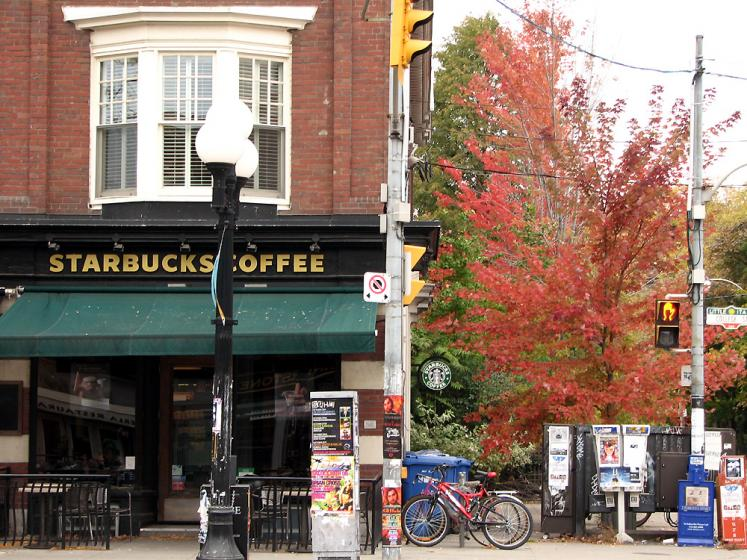 Toronto Photos :: Little Italy :: Starbucks in Little Italy