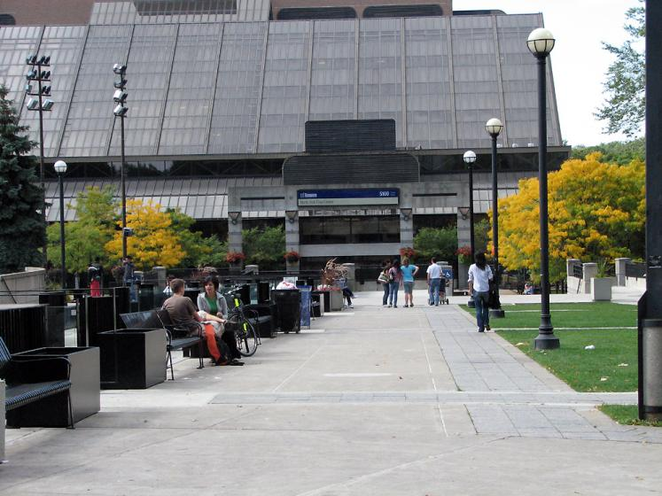 Toronto Photos :: Mel Lastman Square :: Fall in Mel Lastman Square
