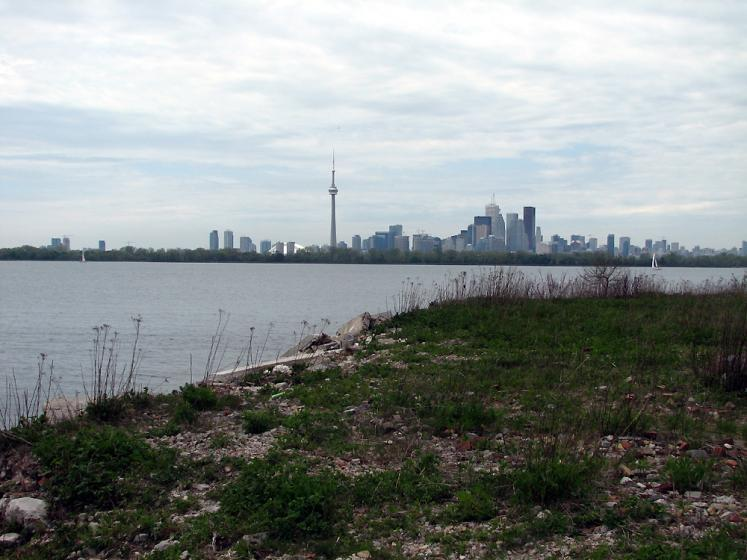 Toronto Photos :: CN Tower :: View on downtown from Tommy Thompson Park