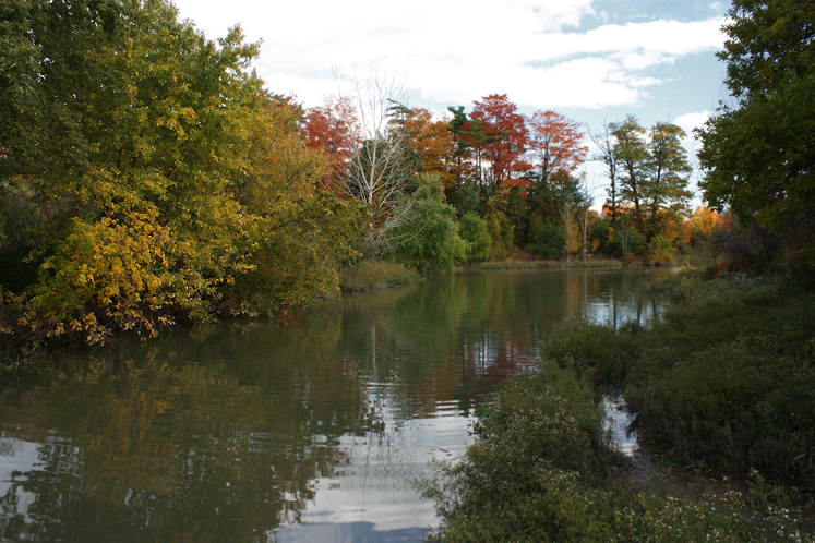 Toronto Photos :: Fall :: North York. Fall - G Ross Lord Park