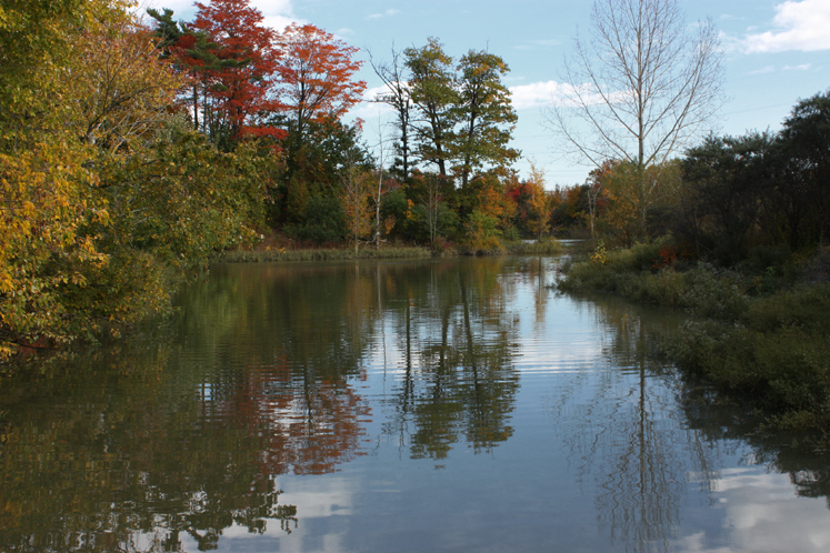 Toronto Photos :: Fall :: Toronto. North York. Fall - G Ross Lord Park