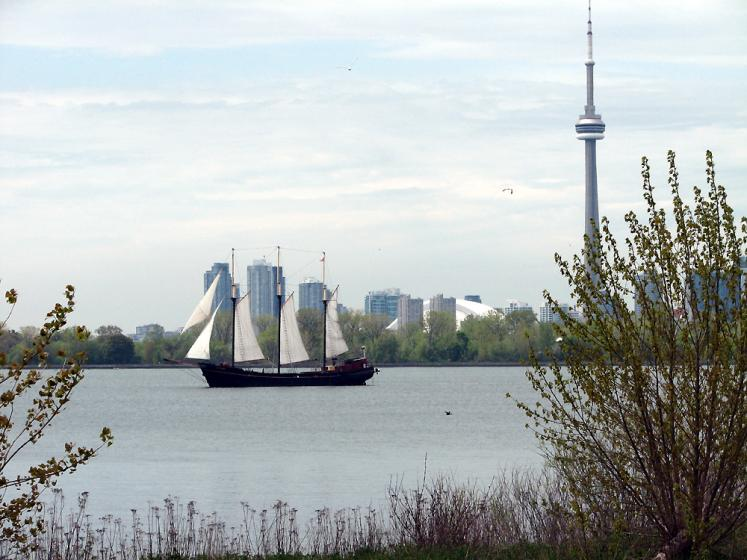 Toronto Photos :: Tommy Thompson Park :: View on CN Tower from Tommy Thompson Park