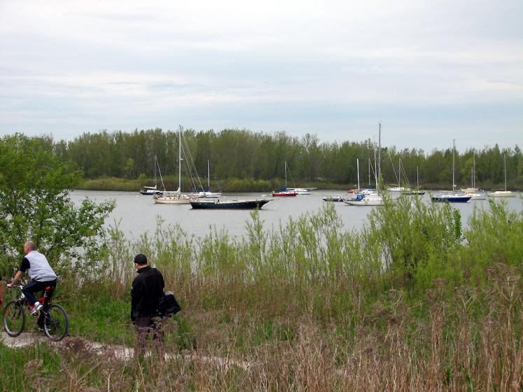 Toronto Photos :: Tommy Thompson Park :: Tommy Thompson Park - boats