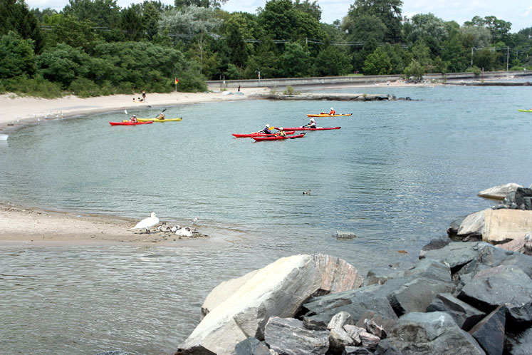 Toronto Photos :: Toronto Island Park :: Kayaking on Centre Island